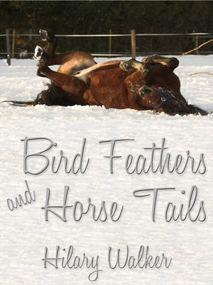 cover image of Bird Feathers and Horse Tails