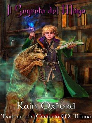 cover image of Il segreto del mago
