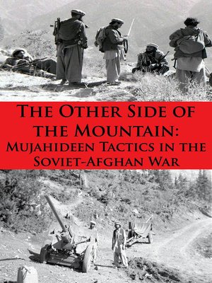 cover image of The Other Side of the Mountain