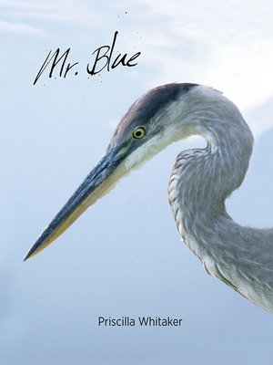 cover image of Mr. Blue