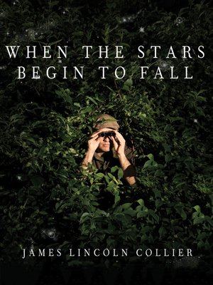 cover image of When the Stars Begin to Fall