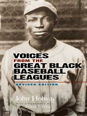 cover image of Voices from the Great Black Baseball Leagues