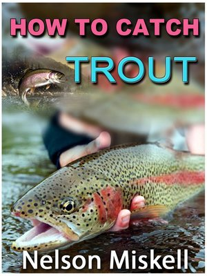 cover image of How To Catch Trout