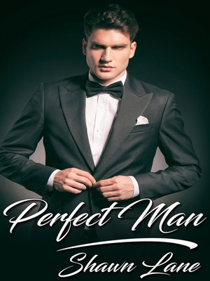 cover image of Perfect Man