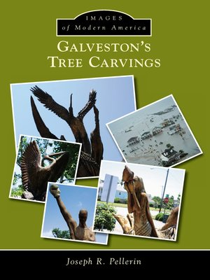 cover image of Galveston's Tree Carvings