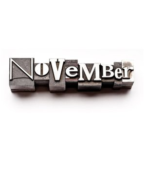 cover image of November, A Month In Verse