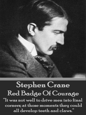 cover image of Red Badge of Courage