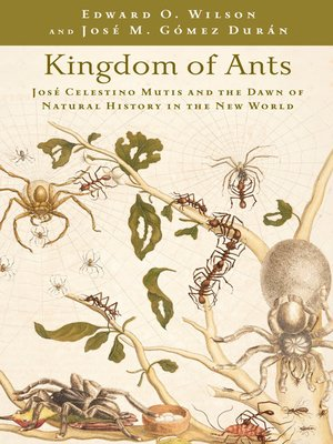 cover image of Kingdom of Ants