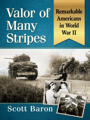 cover image of Valor of Many Stripes