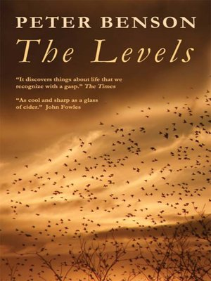 cover image of The Levels