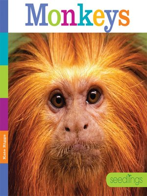 cover image of Monkeys