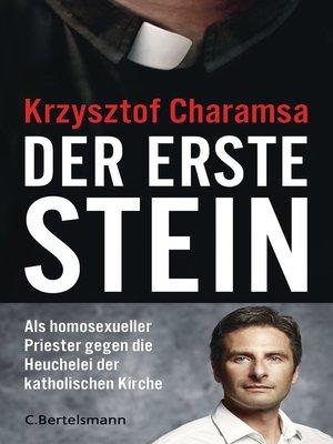 cover image of Der erste Stein