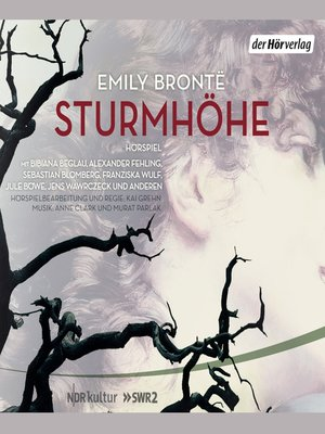 cover image of Sturmhöhe