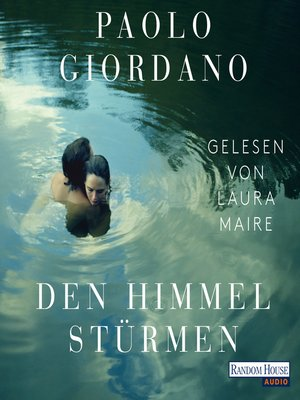 cover image of Den Himmel stürmen