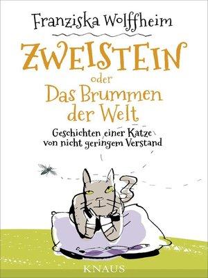 cover image of Zweistein oder Das Brummen der Welt