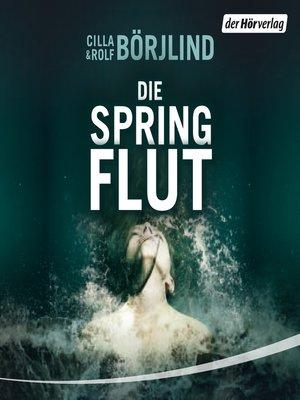 cover image of Die Springflut