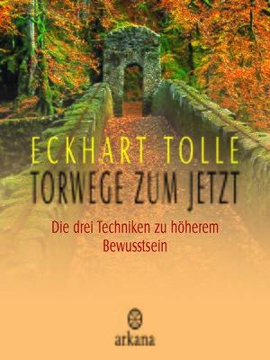 cover image of Torwege zum Jetzt