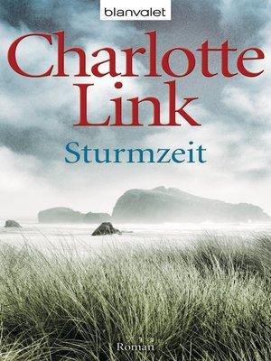 cover image of Sturmzeit