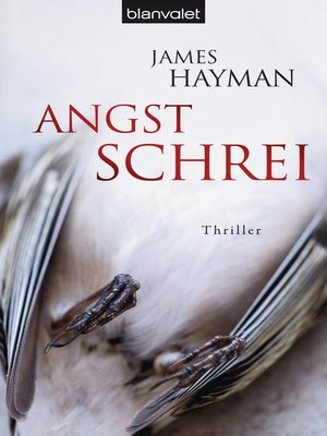 cover image of Angstschrei