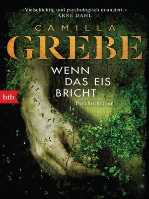 cover image of Wenn das Eis bricht