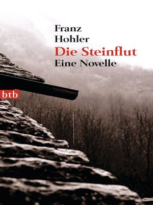 cover image of Die Steinflut