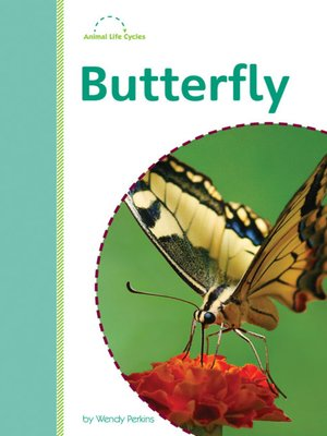 cover image of Butterfly