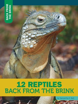 cover image of 12 Reptiles Back From the Brink