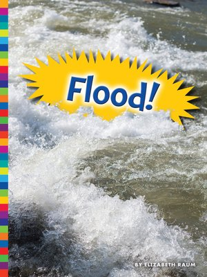 cover image of Flood!