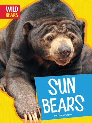 cover image of Sun Bears