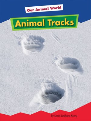 cover image of Animal Tracks