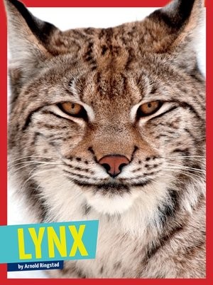 cover image of Lynx