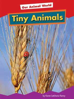cover image of Tiny Animals