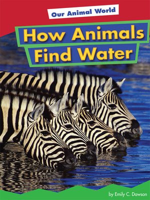 cover image of How Animals Find Water