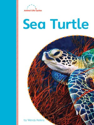 cover image of Sea Turtle