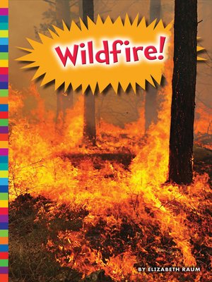 cover image of Wildfire!