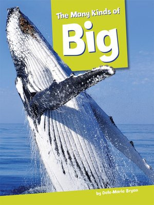 cover image of The Many Kinds of Big