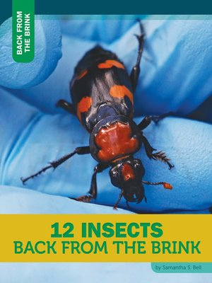 cover image of 12 Insects Back From the Brink