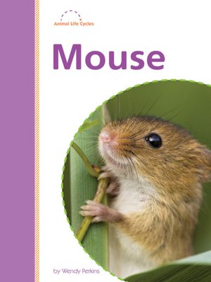 cover image of Mouse
