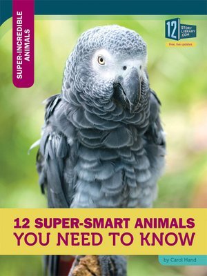 cover image of 12 Super-Smart Animals You Need to Know