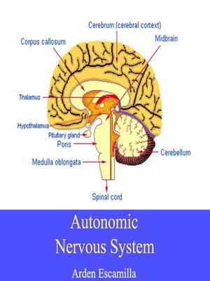 cover image of Autonomic Nervous System