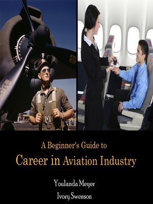 cover image of A Beginner's Guide to Career in Aviation Industry