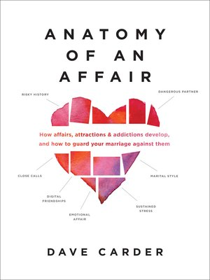 cover image of Anatomy of an Affair