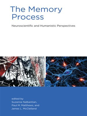cover image of The Memory Process