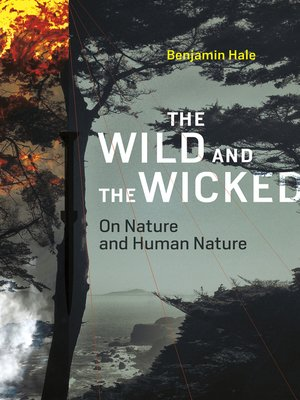 cover image of The Wild and the Wicked