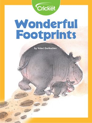 cover image of Wonderful Footprints