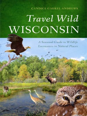 cover image of Travel Wild Wisconsin