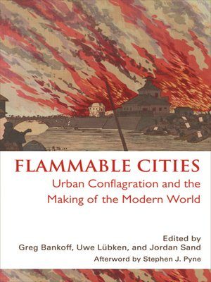 cover image of Flammable Cities