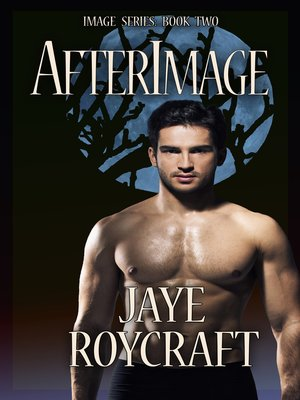 cover image of Afterimage