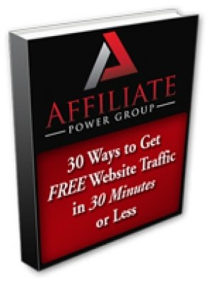 cover image of 30 Ways to Get FREE Website Traffic in 30 Minutes or Less