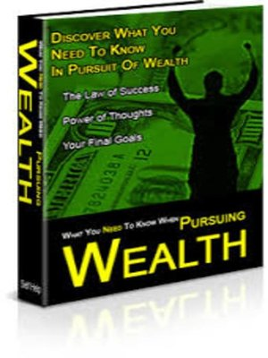cover image of In Pursuit of Wealth